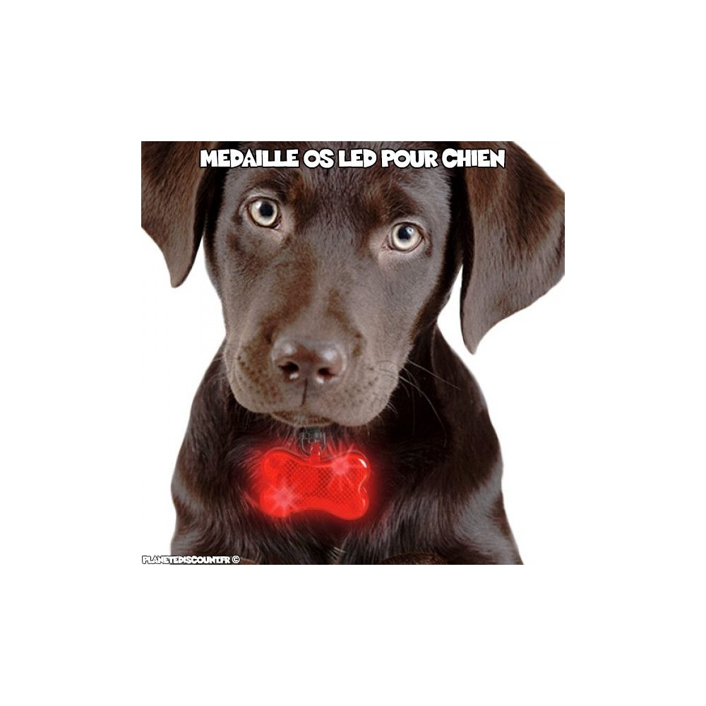 achat vente m daille os lumineuse led pour chiens pas cher. Black Bedroom Furniture Sets. Home Design Ideas