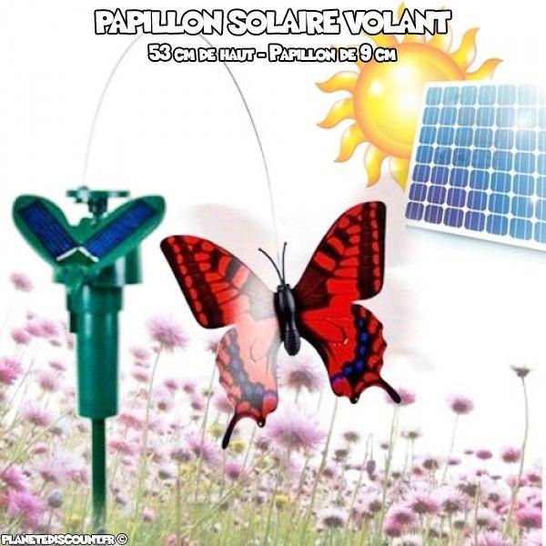 Papillon solaire volant
