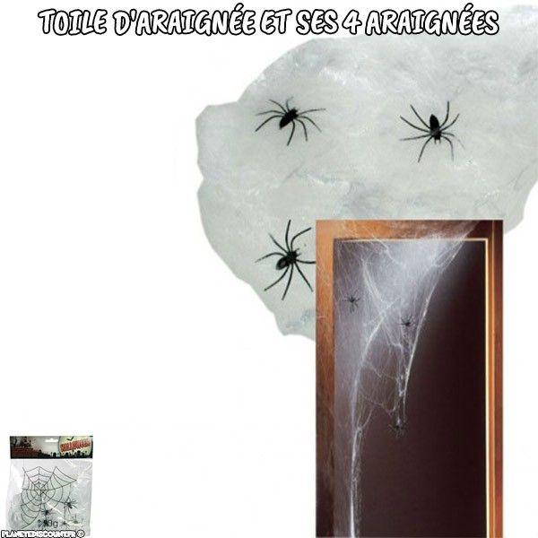 Toile d'araignée et ses 4 araignées