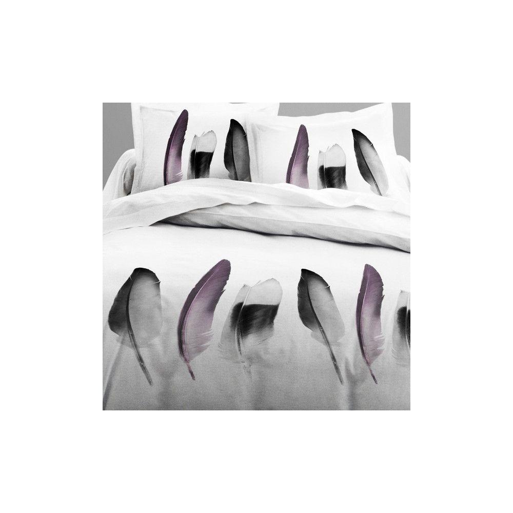 achat parure de lit coton 240x260 cm today piuma pas cher. Black Bedroom Furniture Sets. Home Design Ideas