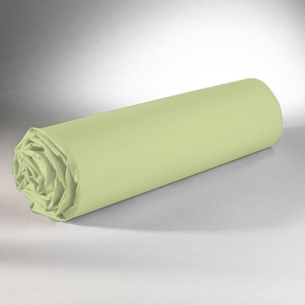 Drap housse 100% Coton 57 fils Vert 140x190