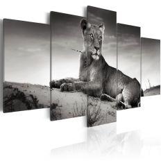Tableau Tigresse dans le désert