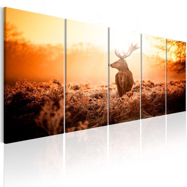 Tableau Deer at Sunset