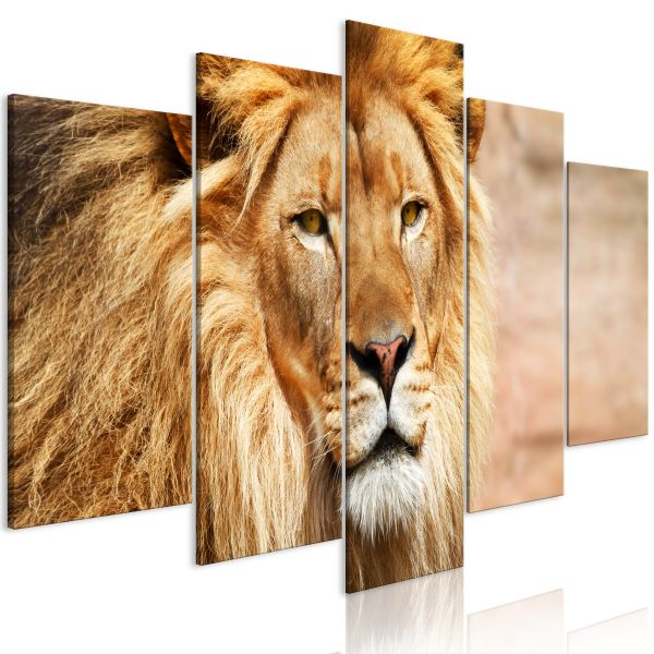 Tableau The King of Beasts 5 Pièces Wide Orange