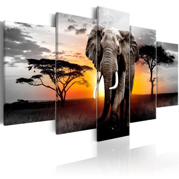 Tableau Elephant at Sunset