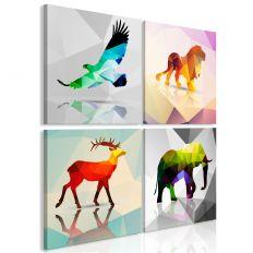 Tableau Colourful Animals 4 Pièces