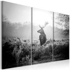 Tableau Black and White Deer I