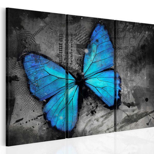 Tableau Etude d'un papillon - triptyque