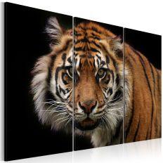 Tableau Tigre prédateur