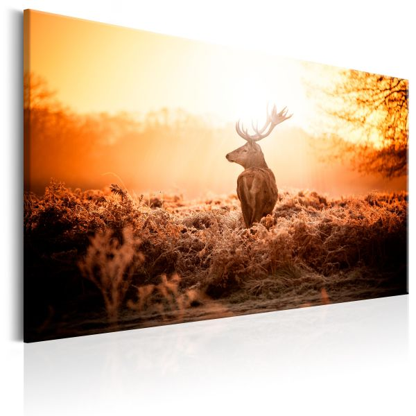 Tableau Deer in the Sun