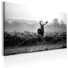 Tableau Deer in the Wild