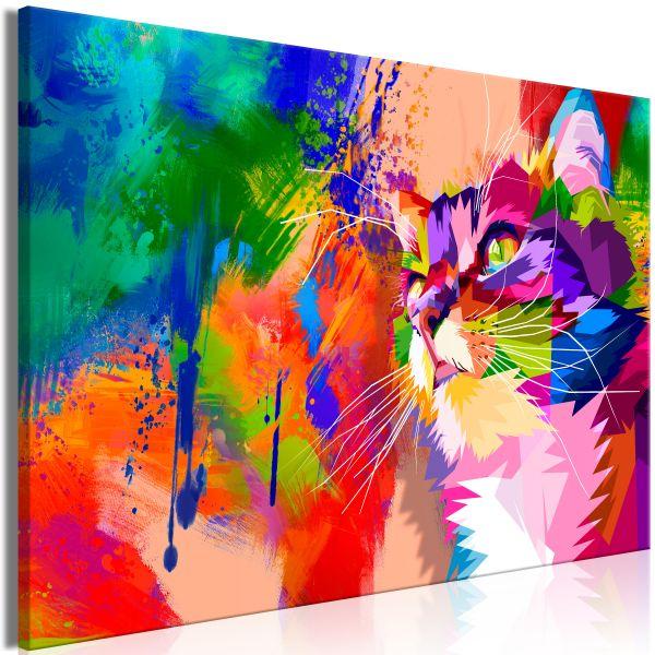 Tableau Colourful Cat 1 Pièce Wide