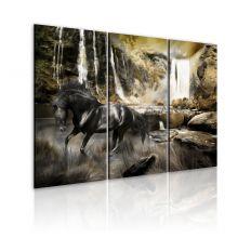 Tableau Cheval noir et cascade rocheuse