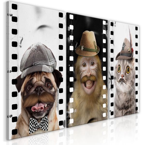Tableau Funny Pets Collection
