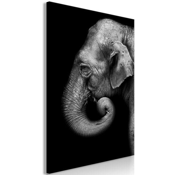 Tableau Portrait of Elephant 1 Pièce Vertical