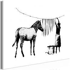 Tableau Banksy Washing Zebra 1 Pièce Wide