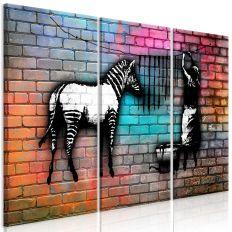 Tableau Washing Zebra - Colourful Brick 3 Pièces