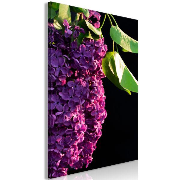 Tableau Fleurs Colours of Spring (1 Part) Vertical